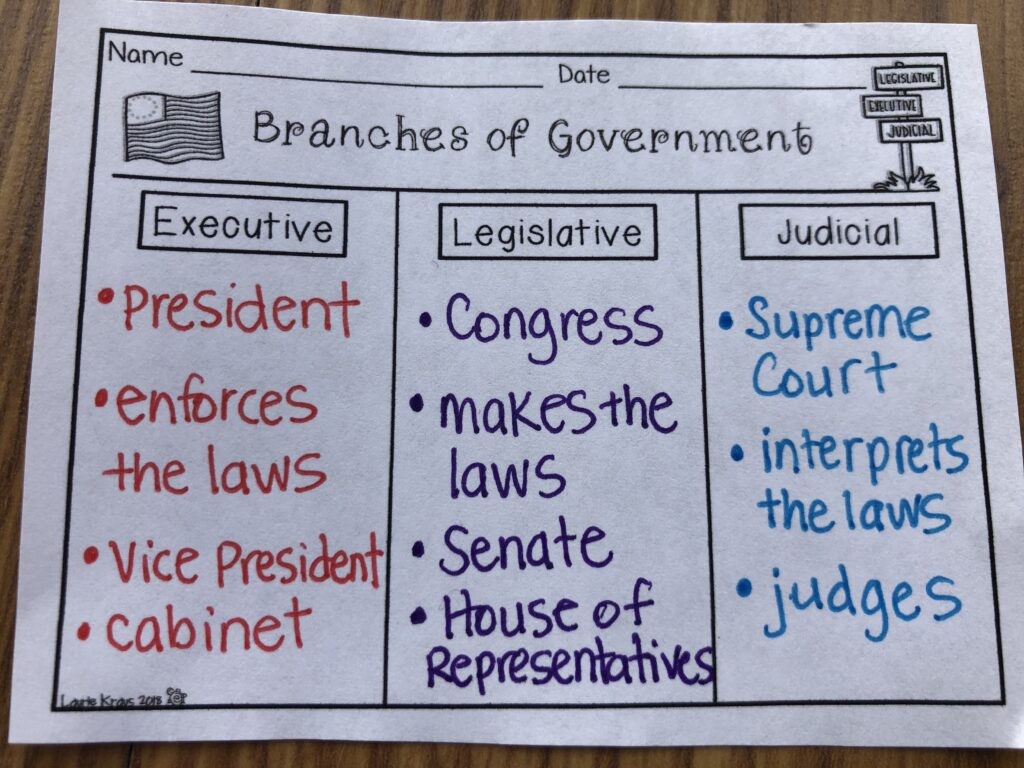 Branches of Government graphic organizer